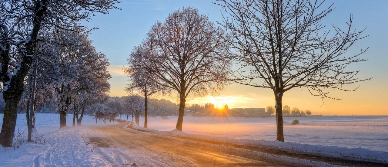 Winter Sunrise Scene